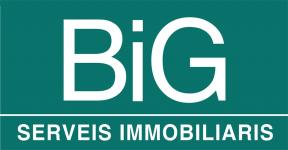 BIG IMMOBLES